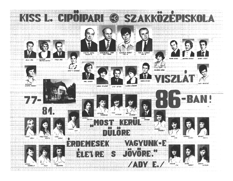 1981 IV. C